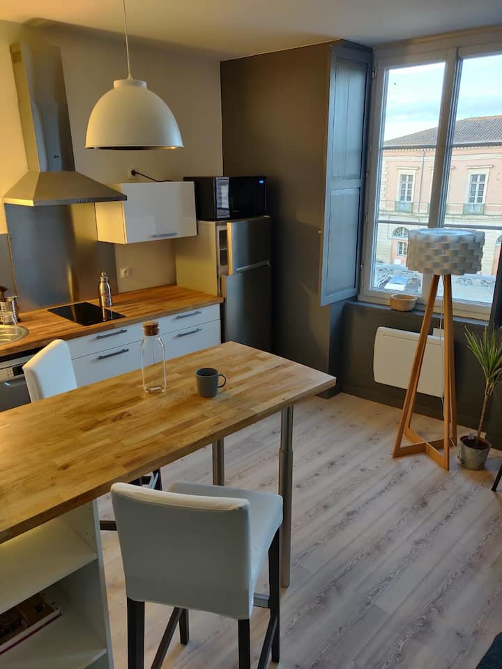 Cosy apartment city center, 30min from Toulouse