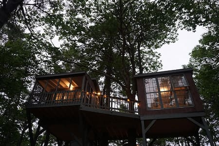Tree Dwelling with Water Views (2) - Georgetown - Ağaç Ev
