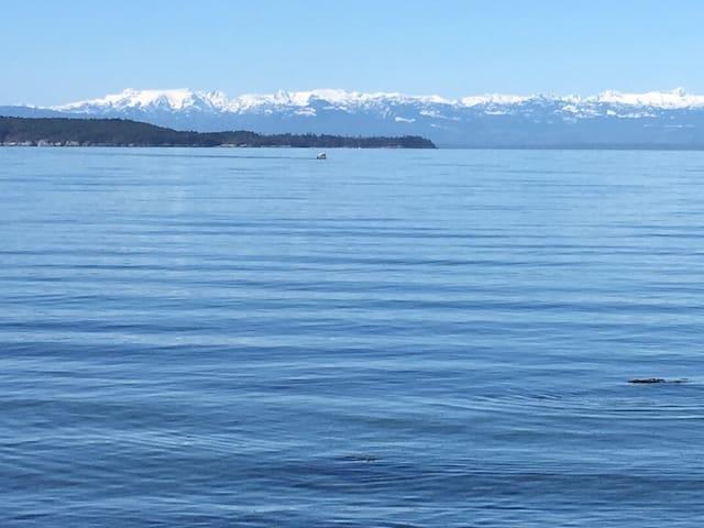 Texada Island and Vancouver Island (Comox Glacier)