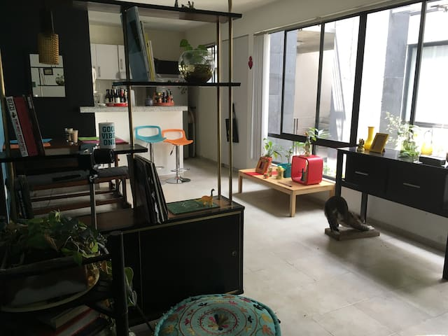 Room in a happy and pleasant place in Mexico City - Mexiko-Stadt - Wohnung