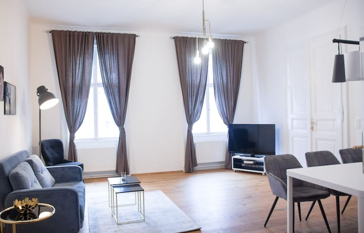 Bright, Beautiful flat in the Heart of Vienna