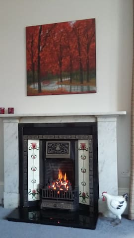 Living flame gas fire in lounge