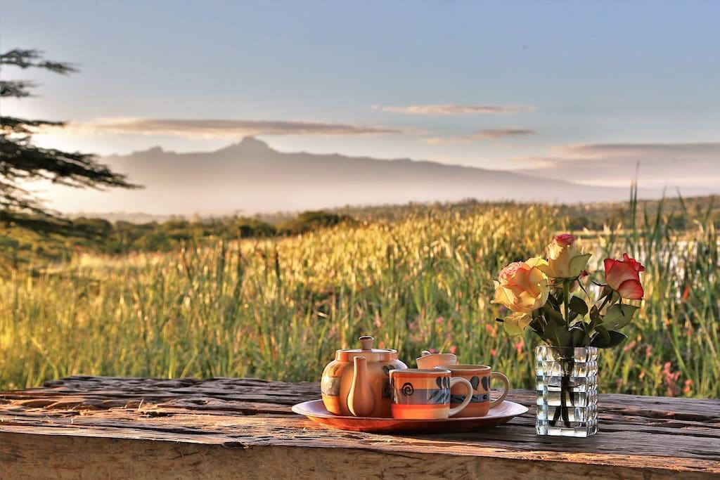 Morning tea on verandah