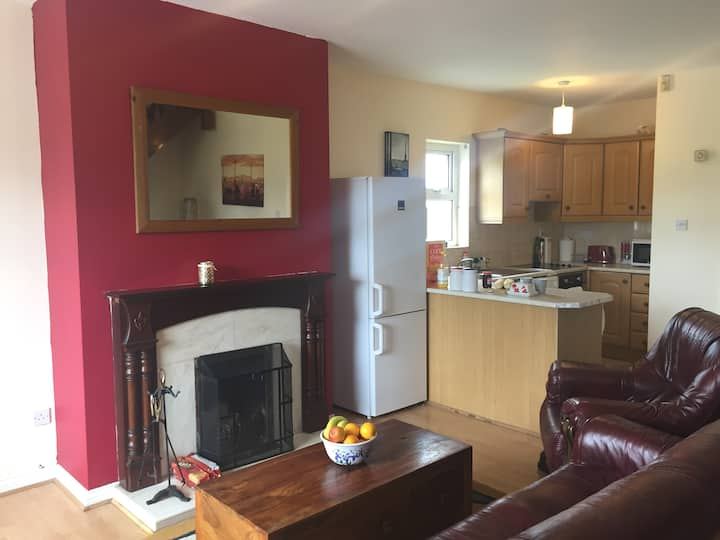 Large Townhouse 15min walk to the heart of Galway!