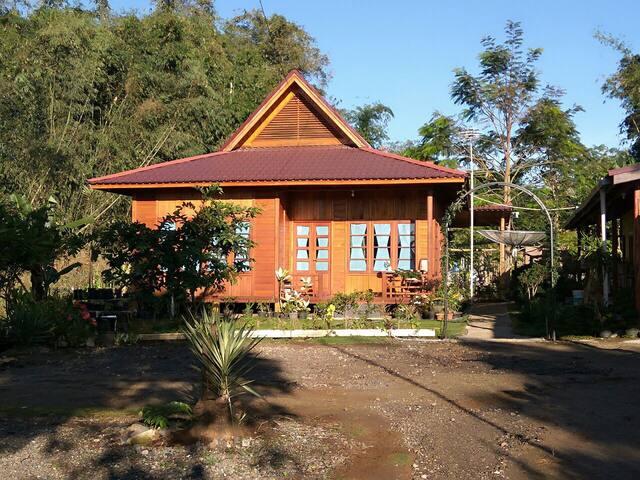 Rumah KayuKu - Bukittinggi - House