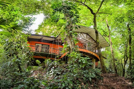 Portasol Living- Bungalow-Rainforest Surrounding