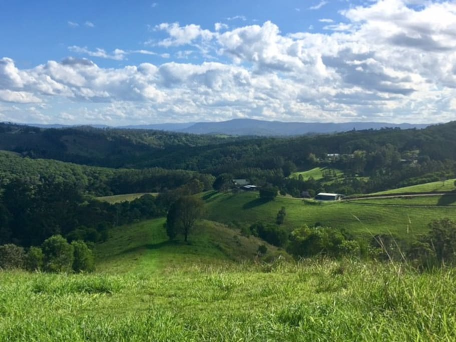 The hills are alive with views to Kenilworth Bluff