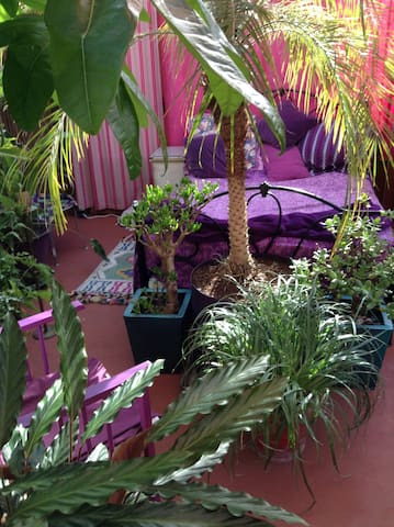 Tropical glasshouse with French breakfast