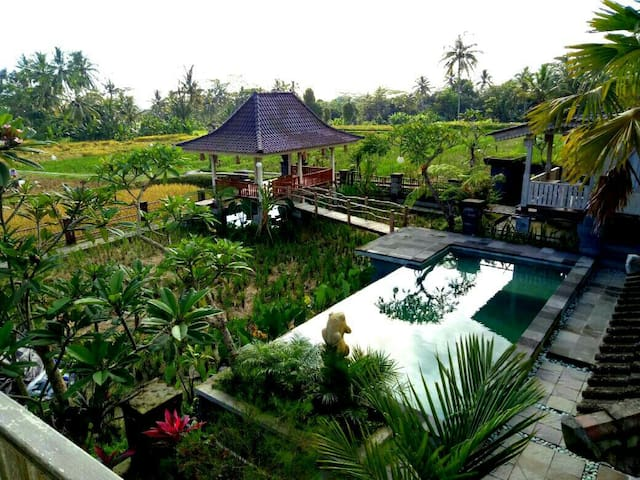 Uma Caming Villa with infinity swimming pool