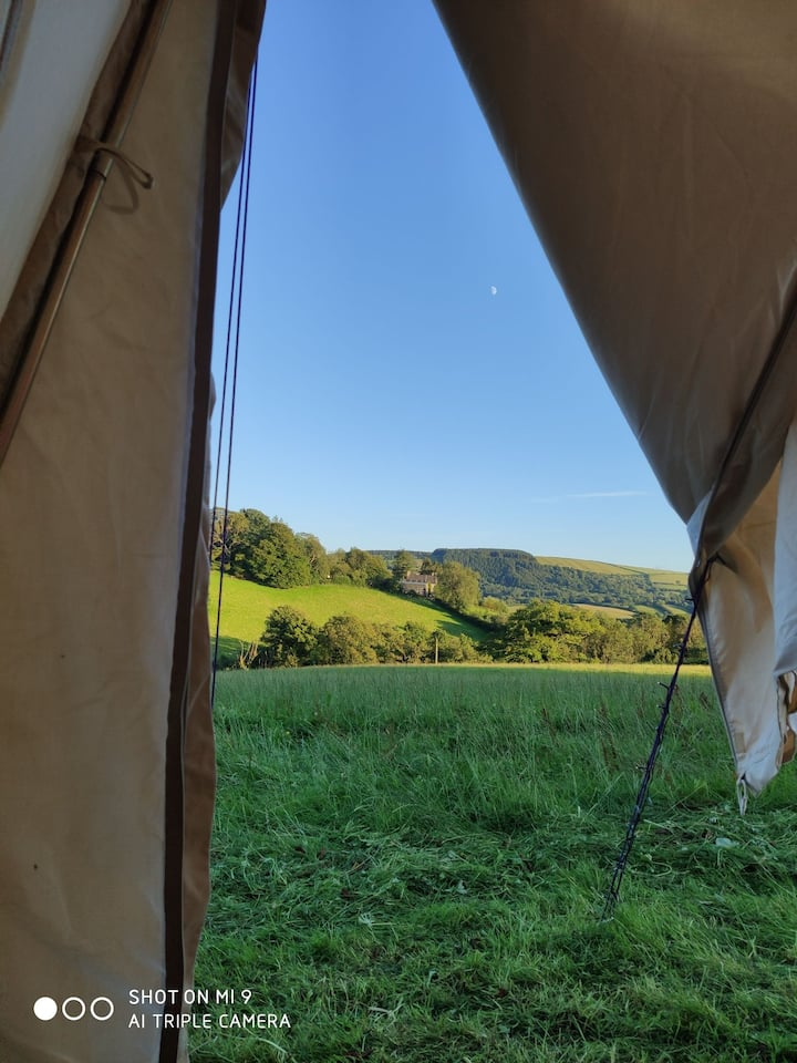 Belle Tent situated on the edge of a scenic forest
