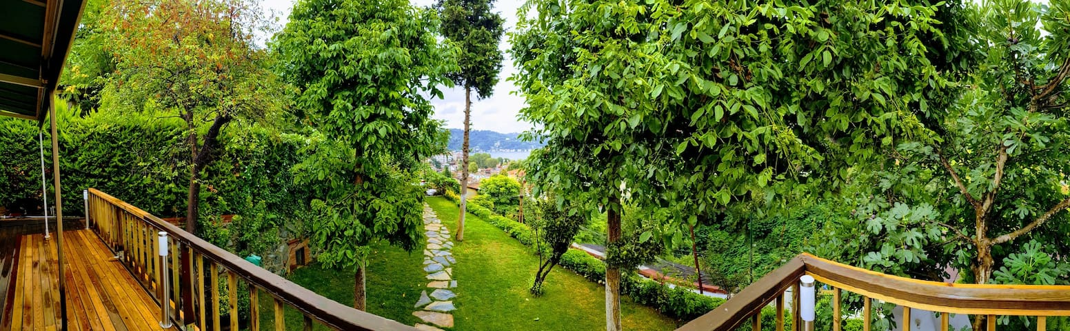 Magnificent Bosphorus and garden view villan