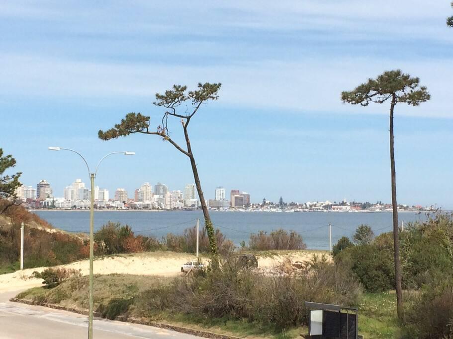 Vista balcón-Peninsula