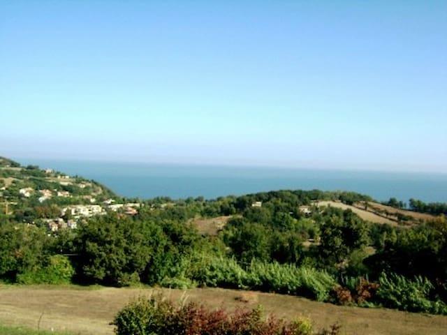 la terrazza vista mare