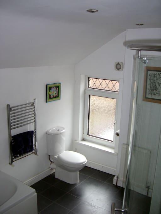 Shared spacious bathroom