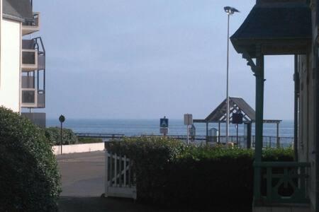 Studio-cabine RDC avec vue sur la mer