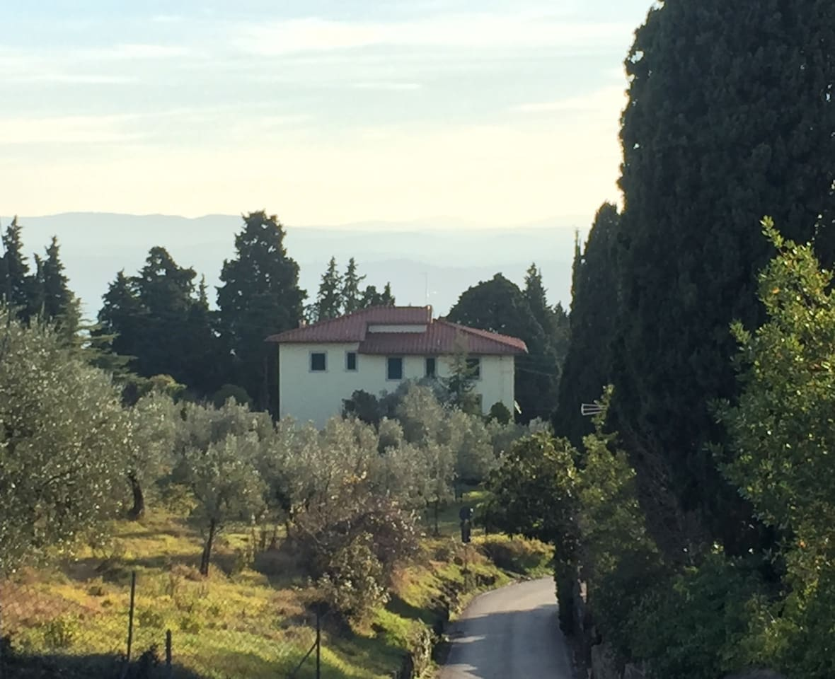 Villa il Baccano - Fiesole Firenze        we need housemates for effortless shared living