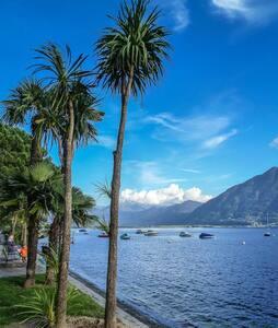 Nido al lago