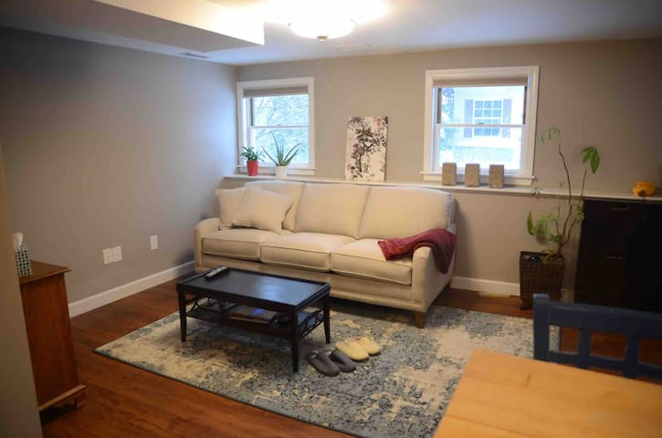 Living room with Boston Interiors couch