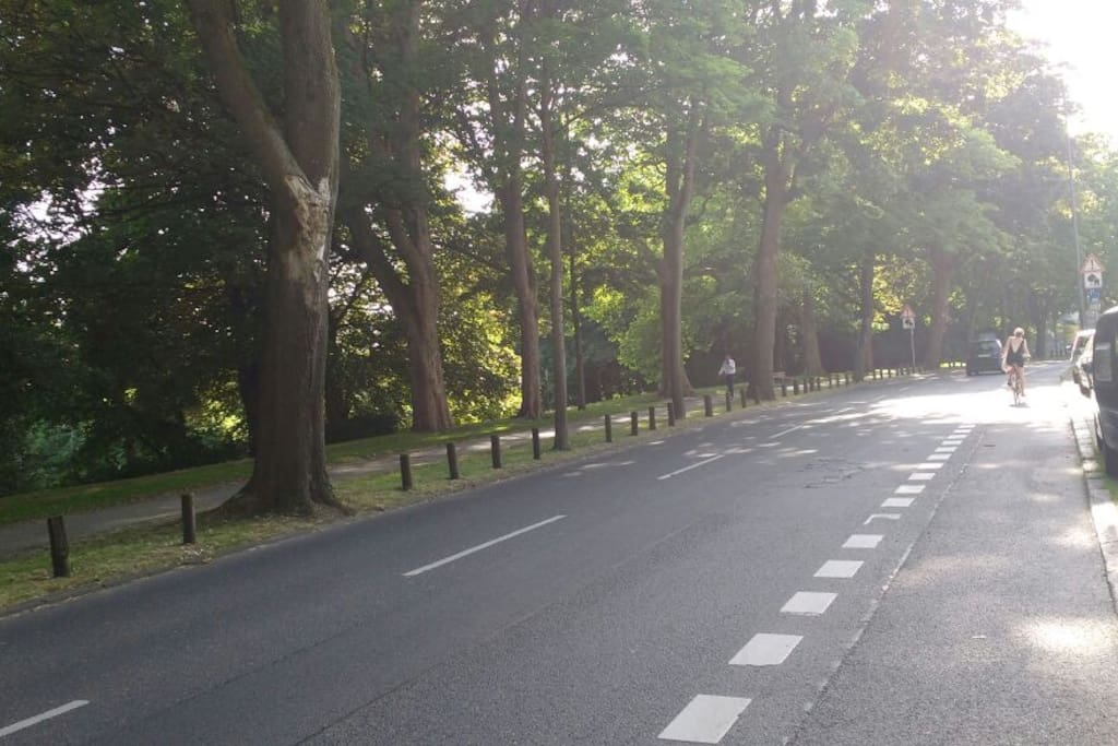 The park right in the oder side of the street