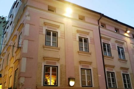 Charming renewed apartment, pet allowed, in the city center of Brixen