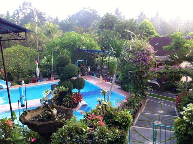 Clean room nearby Menjangan and Gilimanuk Harbour - Bali - Gästehaus