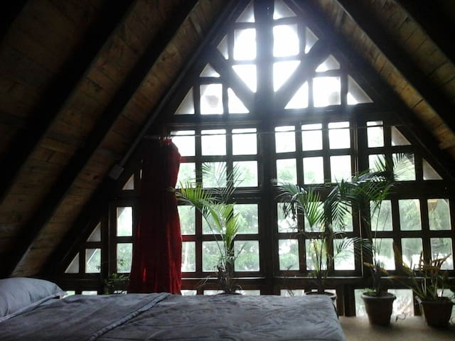 A charming wooden Chalet - Ooty - House