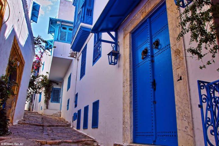 Appart cosy au cœur de Sidi Bou Said