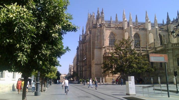 Plaza del museo ideal ubicacion