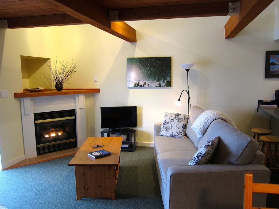 Living room with gas fireplace, flat screen tv with dvd player and a selection of movies