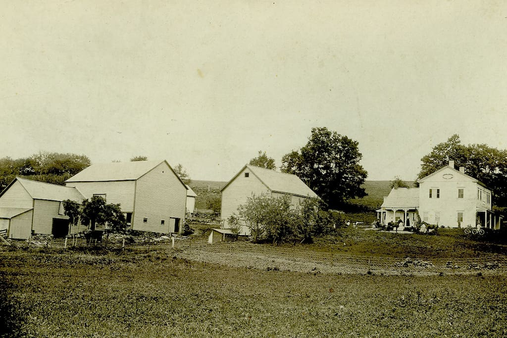 The dairy farm in 1901 owned by the Boyntons.  Horses and carriage with children stand on the south side of the house.