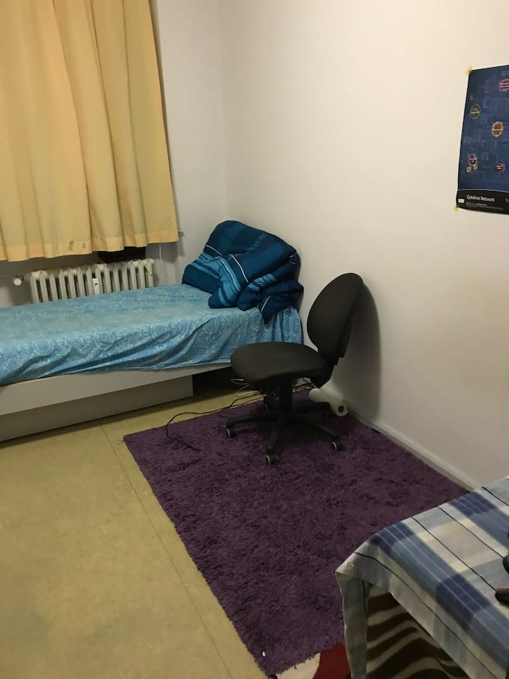 Nice room in City Centre