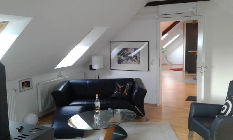 Hübsche klimatisierte Dachwohnung, zentrale Lage