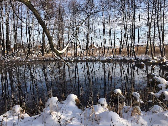 Jazierko v zime