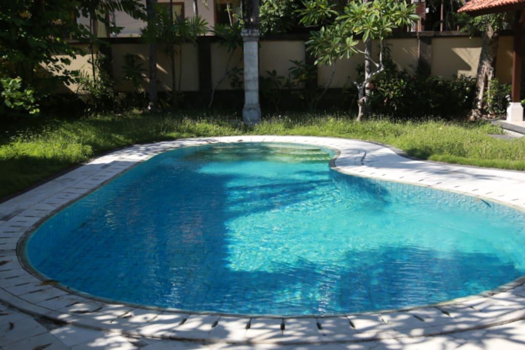 自动每日换水泳池,保障游泳卫生。