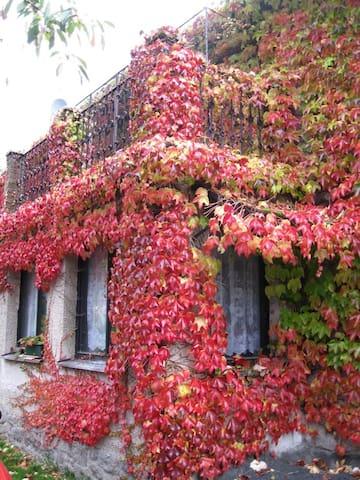 Pokoj s terasou v domě se zahradou - Mukařov