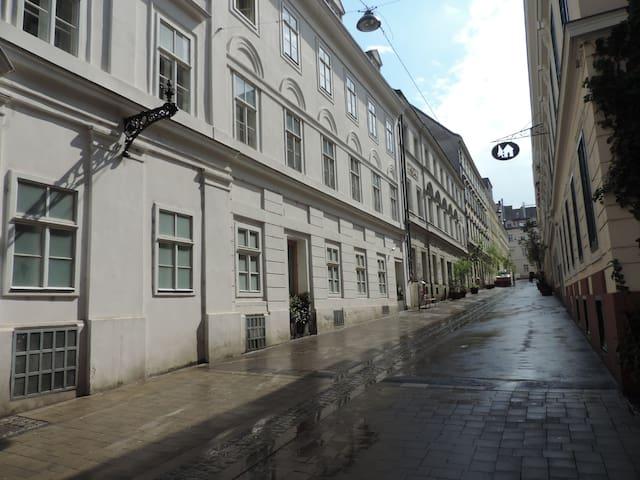 Vintage Apartment Spittelberg
