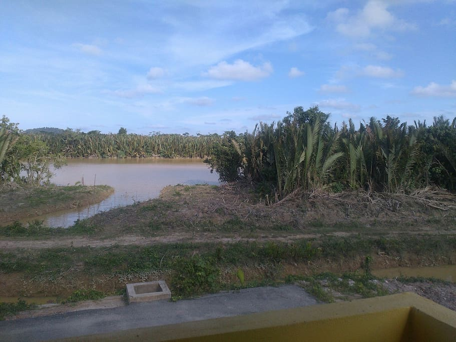 Kemaman River view from balcony
