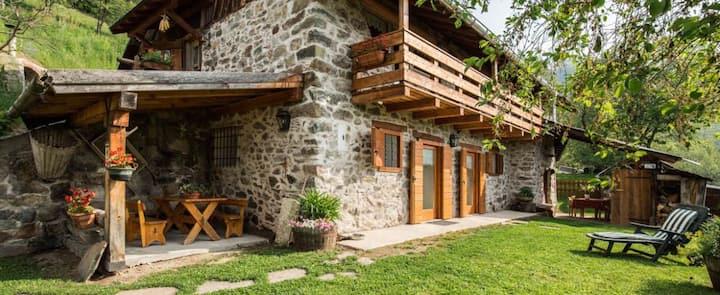 Accogliente Baita in Trentino CPAT022156-AT-054055