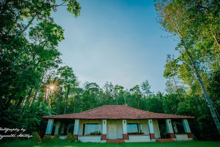 WoodPecker Lakeview Home Stay - Haus