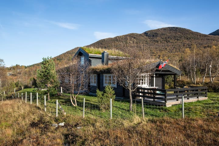 Spacious mountain cabin, close to the fjords
