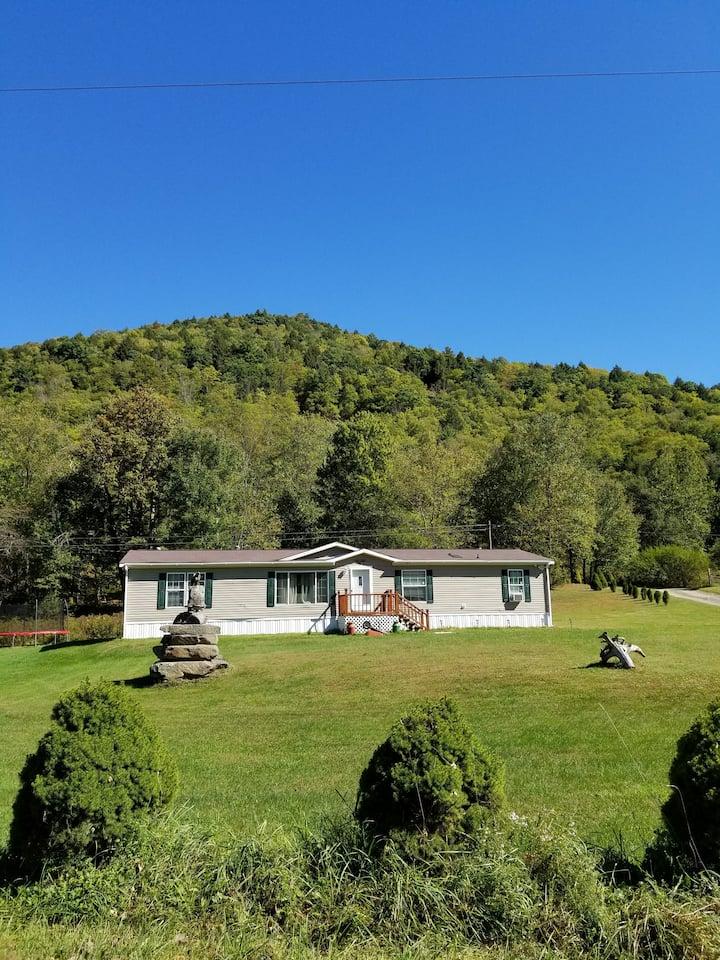 Catskills Modern Comfort Home Mountainous Backdrop