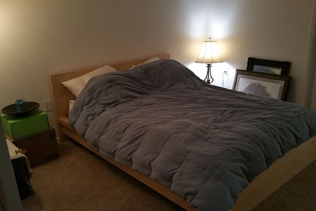 Queen size bed on a $1,000 beauty rest  mattress...zzzzz : )
