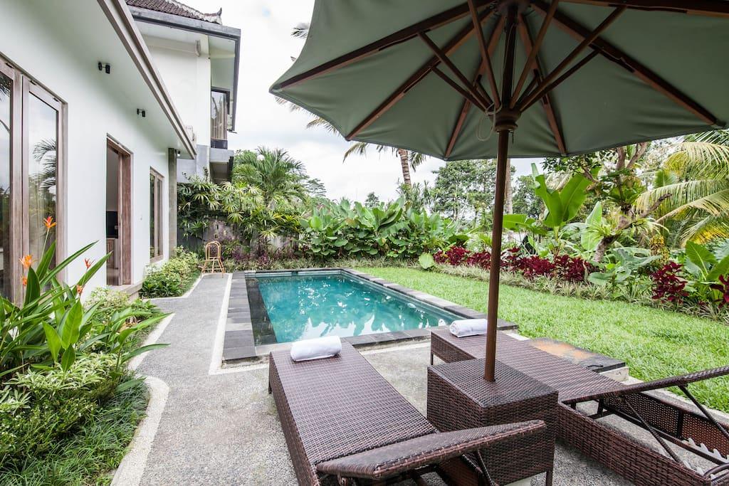 Beautiful pool with greenery