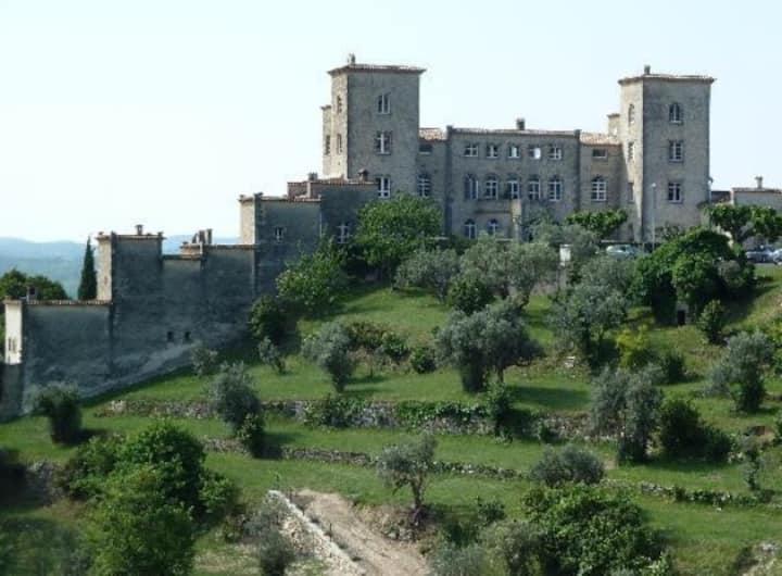 Château du Puy, Tourrettes