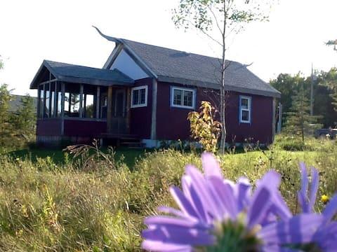The Adorable Alfalfa  Cabin