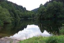 Weiher im idyllischen Reichenbachtal - Small lake at the beautiful Reichenbachtal