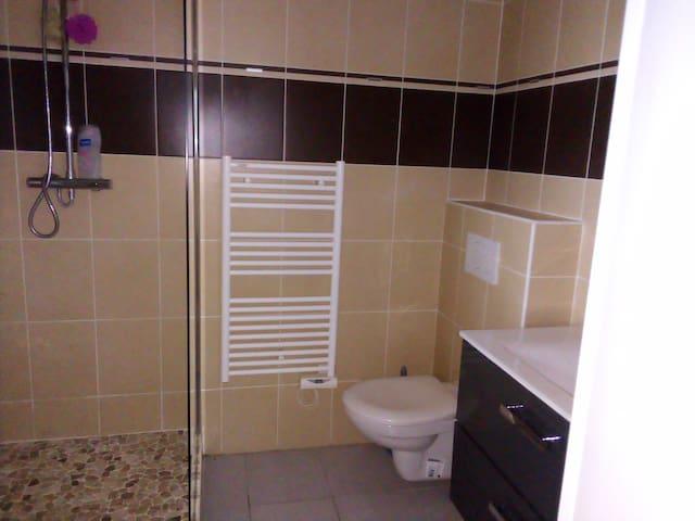 salle de bain et toilette