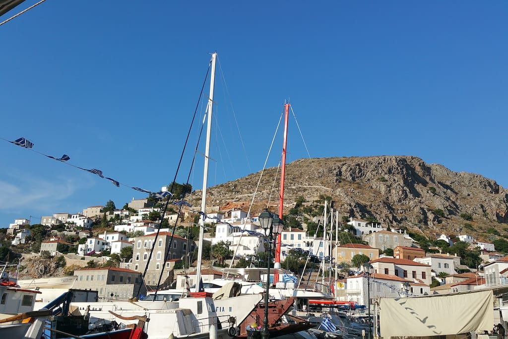 harbor - 40 meters from us