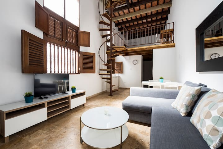 Spacious Double Loft Apartment @ Old San Juan (1D)