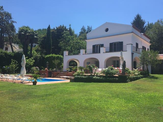 Villa Balsamo: sea view, garden with pool, parking